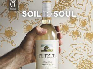 Kesän raikas uutuus – Fetzer Valley Oaks Pinot Grigio